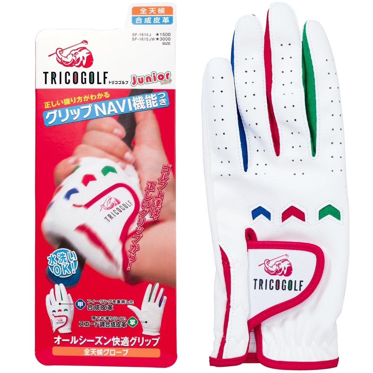 キャスコ KASCO トリコグリップNAVI機能付きグローブ S 左手着用(右利き用) ホワイト ジュニア